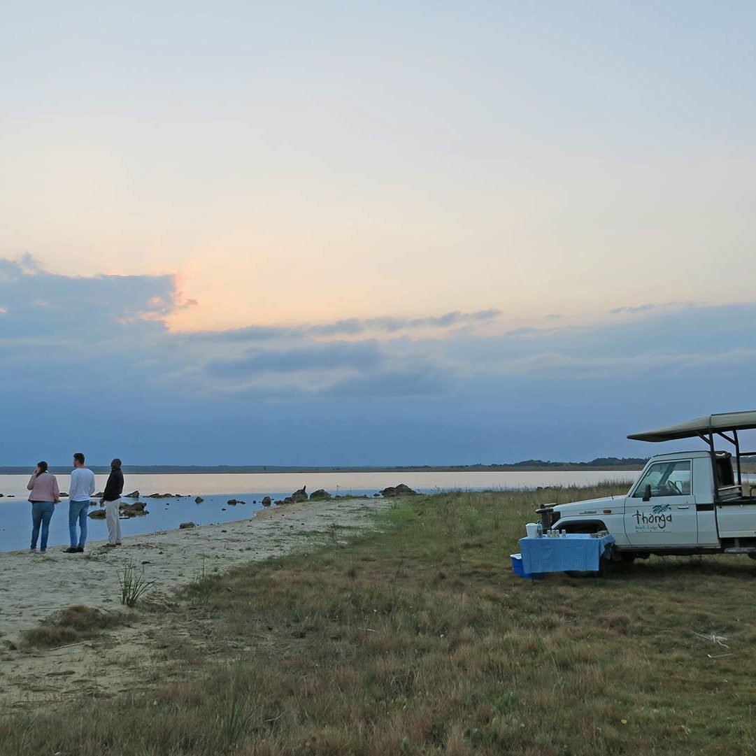 Experiences at Thonga Beach Lodge